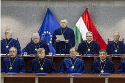 Several Critical Issues in the Development of the Administration of Hungarian Constitutional Justice