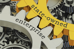 Audit Experiences of State-Owned Business Organisations in Service of the State Management Approach
