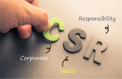 Perspectives in Corporate Social Actions and Social and Financial Performance